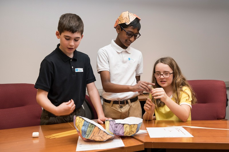Fifth graders made and modeled paper diagrams of the brain during a recent tour at UD.