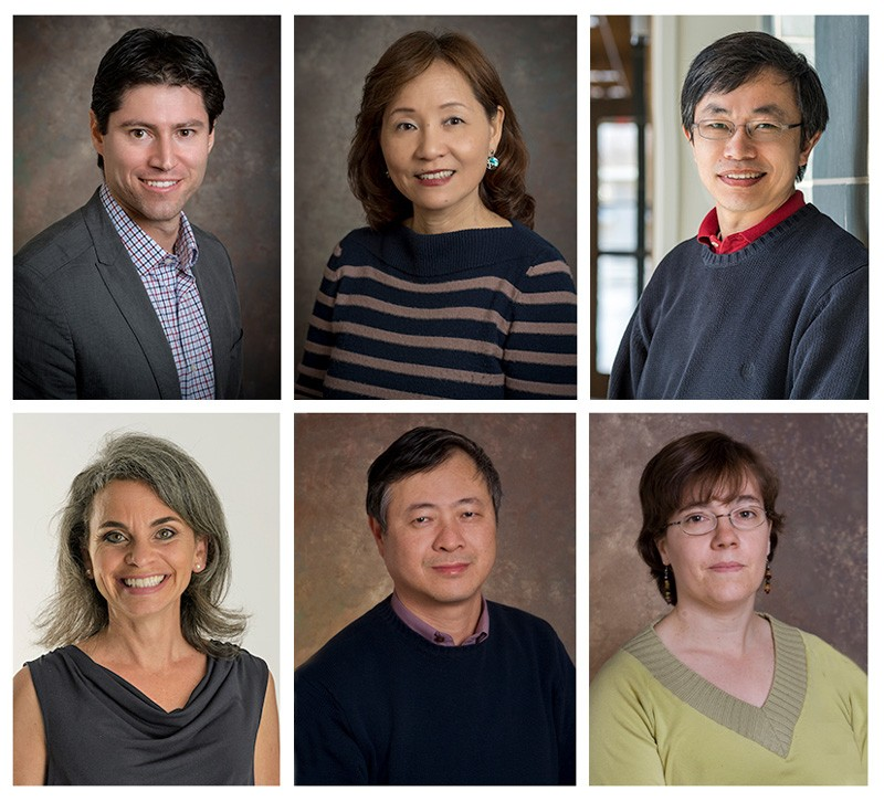 UD's 2019 Highly Cited Researchers include, from top left, Rodrigo Vargas, Cathy Wu and Yushan Yan, and from bottom left, Wendy Smith, Hongzhan Huang and Cecilia Arighi.