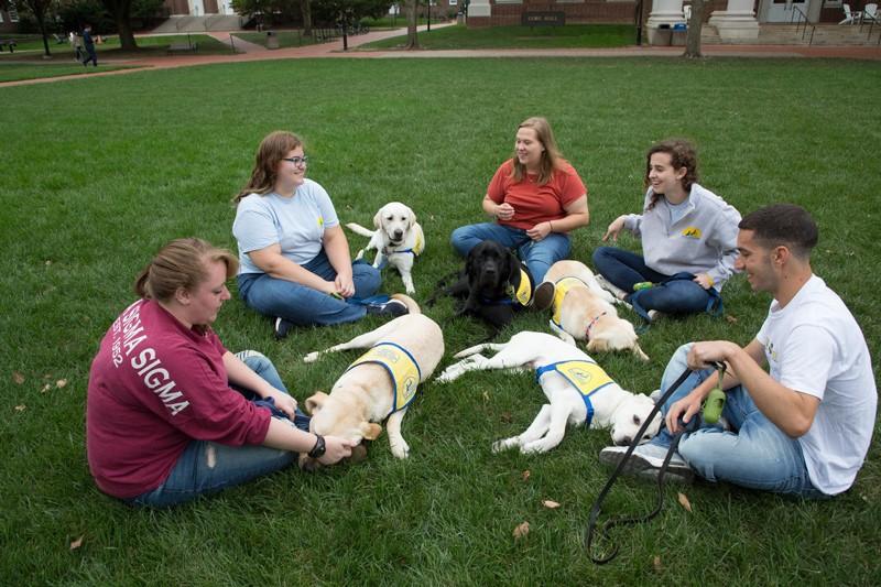 Au cours de l'automne 2019, avant que la pandémie de coronavirus COVID1-9 n'ait à éviter les distanciations sociales, le chapitre UD sur l'accompagnement des compagnons canins s'est réuni en vert.