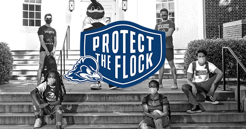 fb-protect-the-flock-800x420