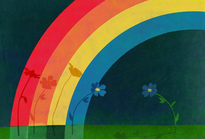 rainbow illustration to encourage happiness