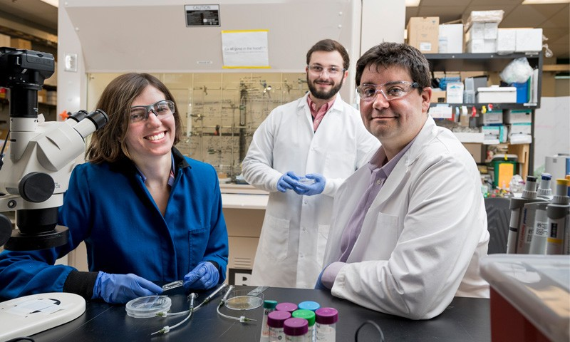 UD assistant professor Jason Glegorn (right) has received a National Science Foundation CAREER award to study how different immune cells and drugs travel through and interact in the lymph node. Pictured with Gleghorn are doctoral students in his lab, Jasmine Shirazi (left) and Michael Donzanti (center).