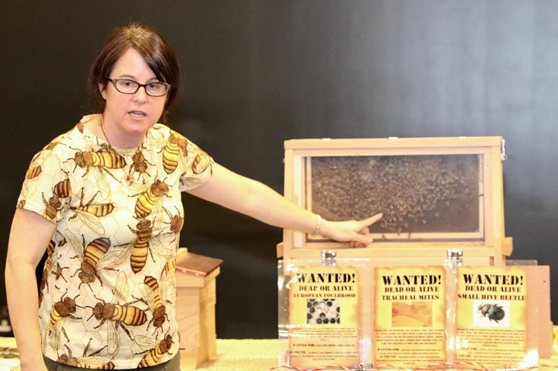 "Debbie Delaney, associate professor of entomology, said the human diet would be ""really drab"" if it weren't for insects like bees who pollinate the food supply."