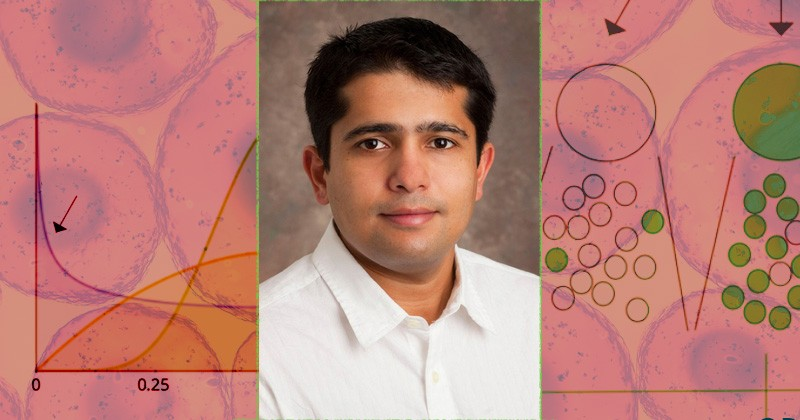Abhyudai Singh is a mathematical biologist and associate professor at the University of Delaware, who studies and models biochemical processes inside living cells.