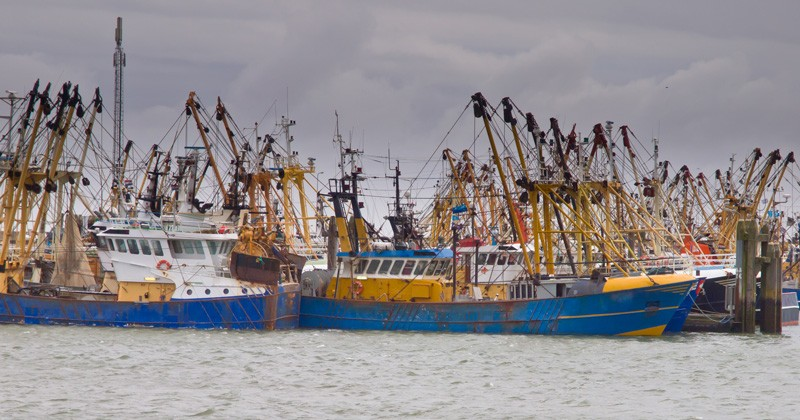 commercial fishing boats in African port